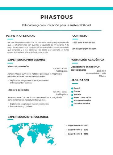 elaboración personalizada de cv - curriculum vitae