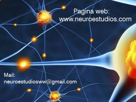 electroencefalograma eeg a domicilio mapeo potencial evocado