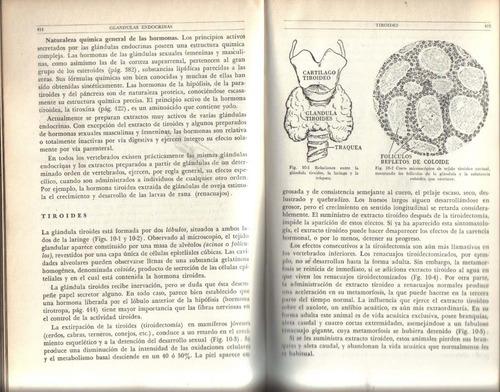 elementos de fisiología humana: herbert best, norman burke t
