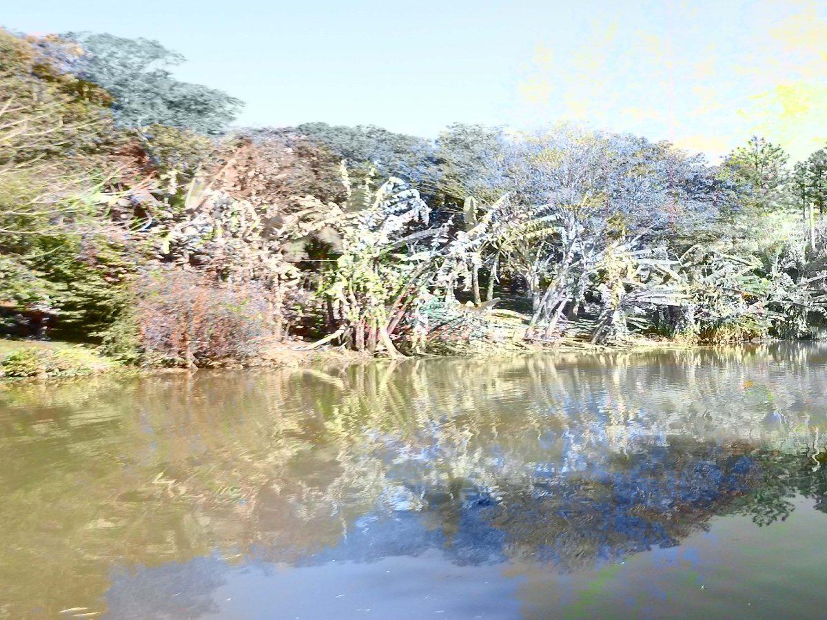 em são lourenço linda chácara com lago e piscina