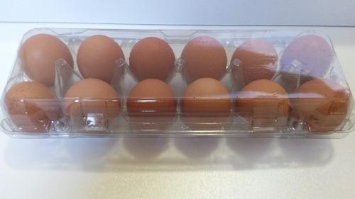 embalagem para 12 ovos de galinha 250 unid frete grátis