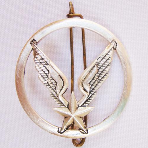 emblema distintivo militar coleção