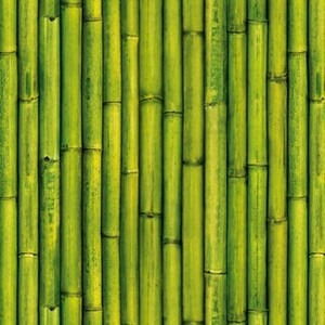 empapelado papel muresco zen cañas bambu vinilizado 34761