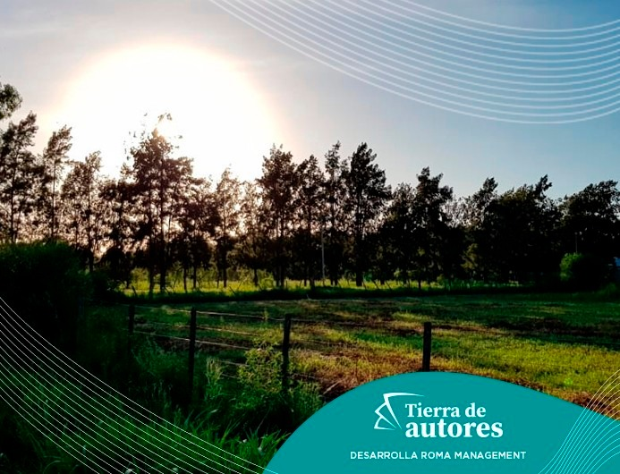 emprendimiento lote  terreno - tierra de autores pueblo esther - barrio abierto  residencial