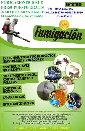 empresa d fumigacion:cucarachas roedores zancudo 04146368445