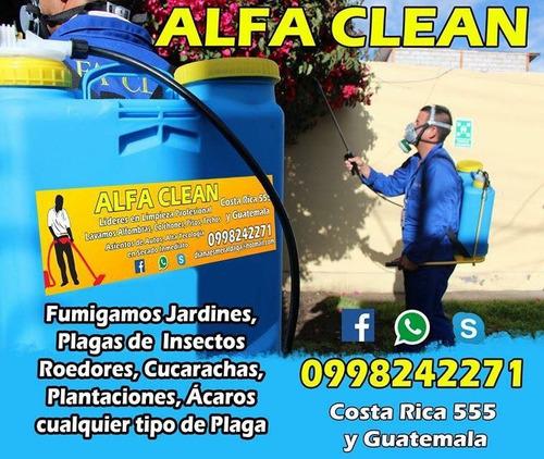 empresa profesional de limpieza alfa clean ambato