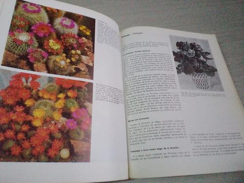en el mundo de las plantas de interior (dieter herbel)