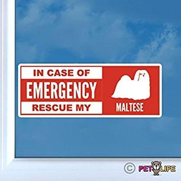 en funda de emergencia rescate mi maltés pegatina de vinilo