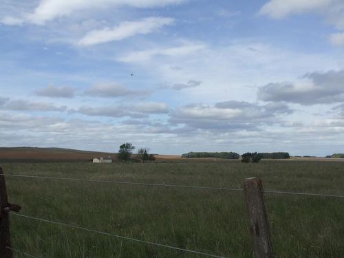 en napaleufú 142 has. agrícolas