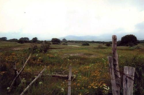 en venta 10 has. en huimilpan, atención inversionista, para proyecto eco turismo