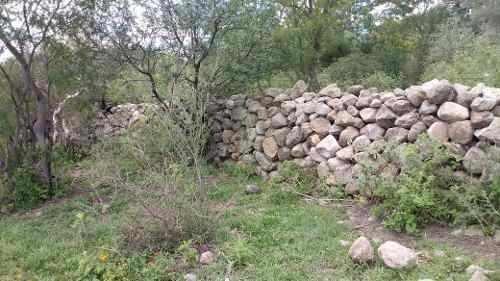 en venta rancho en municipio de colón qro 100 has.