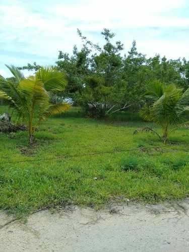 en venta terreno en comunidad raudales a 30 km de chetumal