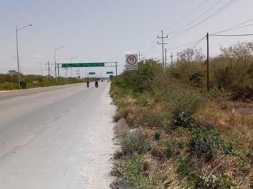en venta uso industrial 20 hs. carretera progreso.