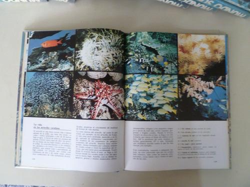 enciclopedia cousteau mundo submarino 10 tomos