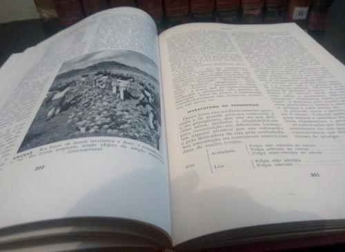 enciclopédia prática jackson - 12 volumes
