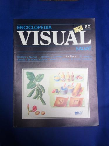 enciclopedia visual salvat fasciculo nº60 antiguo