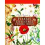 Atlas Ilustrado De Plantas Silvestres E Infusiones Curativas