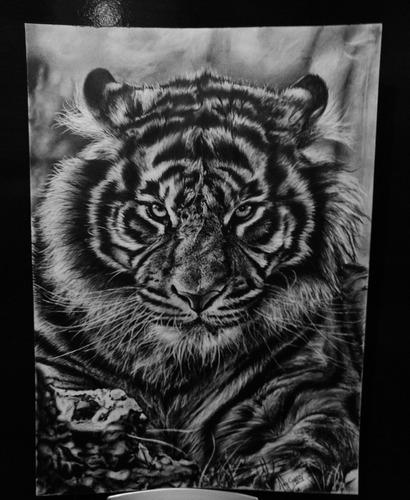 encomendas desenho realistas a lápis grafite