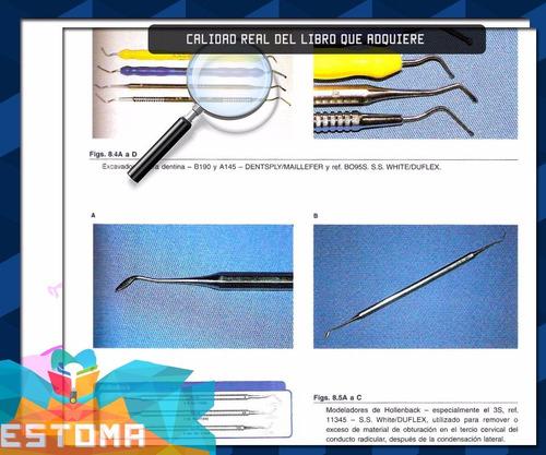 endodoncia tratamiento conductos radiculares  pdf dentista