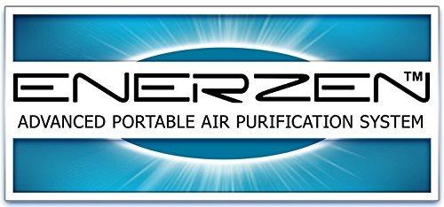 enerzen comercial generador de ozono o3 6,000mg industrial p