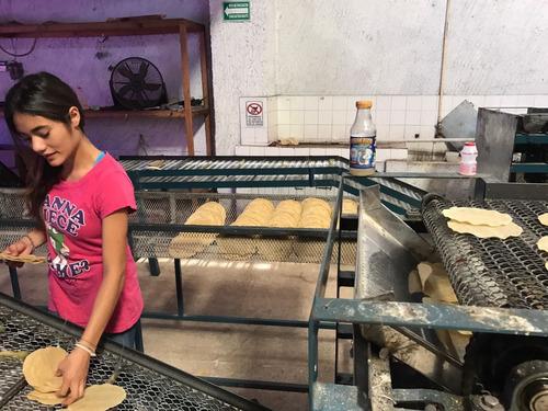 enfriador tortillas