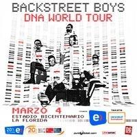 entradas backstreet boys - dna world tour - cancha general