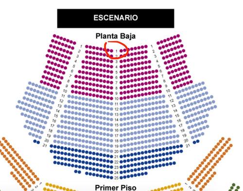 entradas dido - teatro coliseo platea fila 1 central 31-10