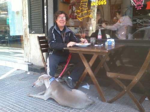 entrenador egresado kennel club, psicologo titulo español