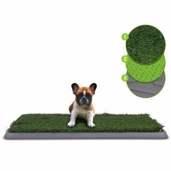 entrenador perros tapete