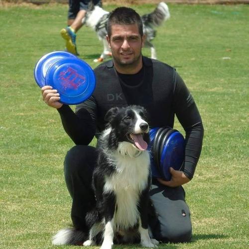 entrenamiento adiestramiento canino profesional a domicilio