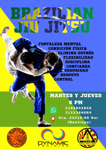 entrenamiento personalizado / capoeira / jiujitsu brasilero
