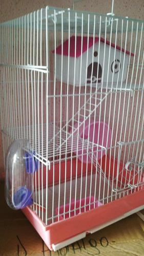 entretenida jaula hamsters 3 pisos + 1 hamsters