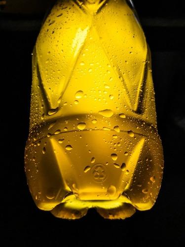 envase botella pet para cerveza 1000ml 1l envios al interior