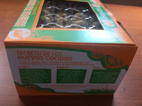 Envases pl sticos para huevos de codorniz x 40 unidades - Envases de huevos ...
