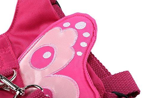 eplaza bebé niño caminando de seguridad de la mariposa de