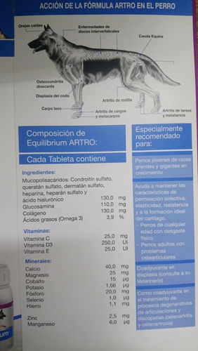 equilibrium artro
