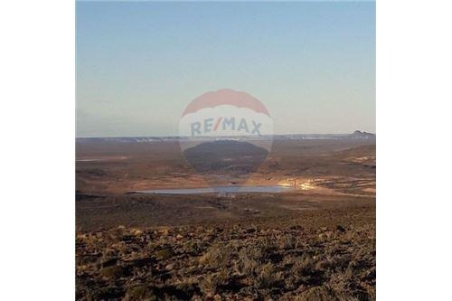 equipo re/max cordillera reserva natural  11.000 h
