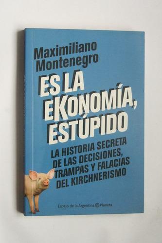 es la ekonomia estupido - maximiliano montenegro