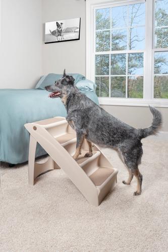 escalera pupstep para mascota mediana