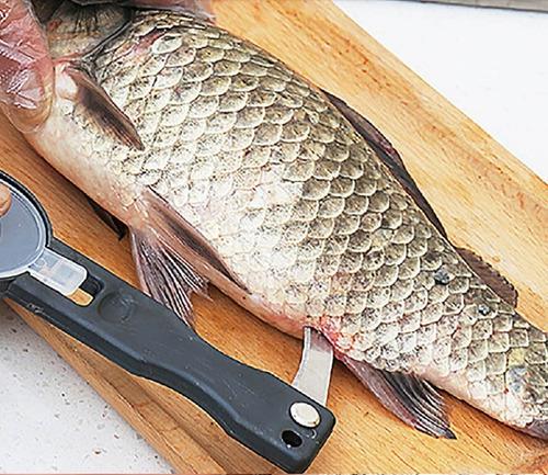 escamador removedor de escamas del pescado