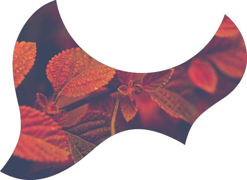 escudo palheteira resinada violão aço jumbo sônica red leafs