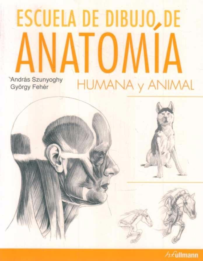 Escuela De Dibujo De Anatomia Humana Y Animal - Szunyoghy - $ 850,00 ...