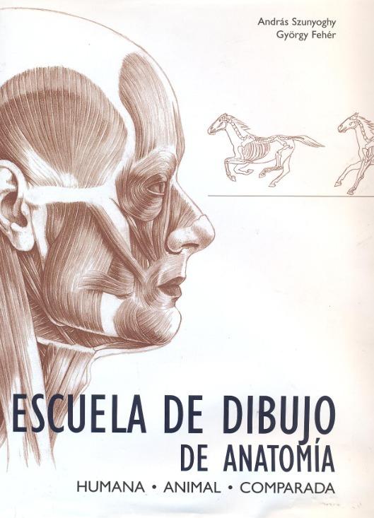 Escuela De Dibujo De Anatomia Libro Completo Digital Pdf