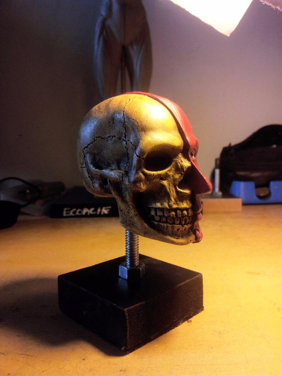 Escultura Cráneo Anatomía Humana Fc - $ 450,00 en Mercado Libre