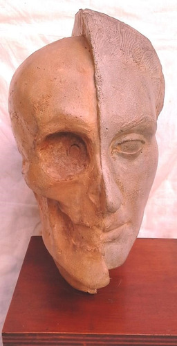 escultura cráneo rostro cabeza 40x20x20cm - excelente