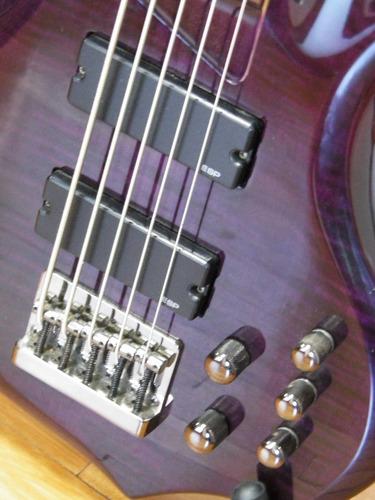 esp ltd f-155dx 5-string bass