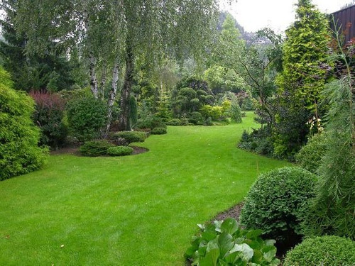 espacios verdes, cesped,  nivelacion, sistemas de riego