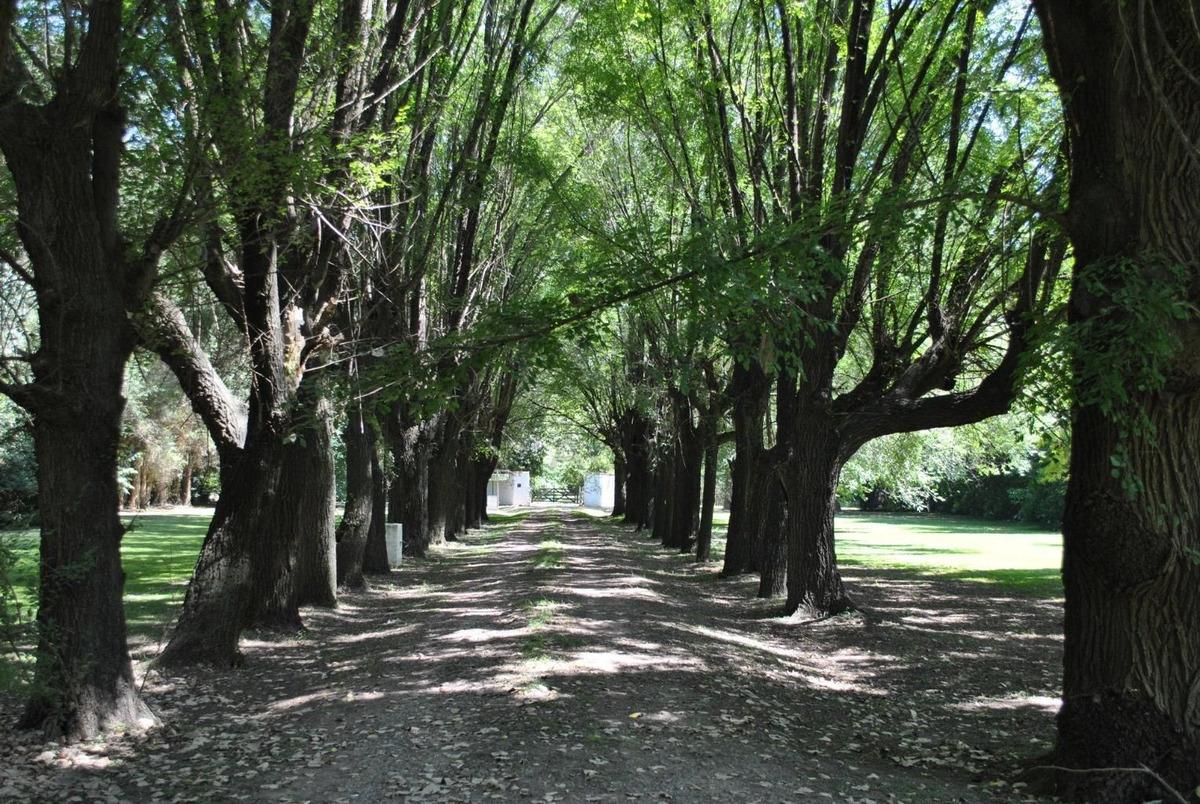 espectacular casa quinta en barrio peluffo-cañuelas