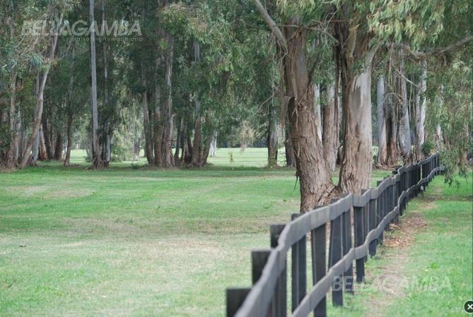 espectacular chacra de 2 hectareas. en quebradas excelente ubicacion dentro del barrio