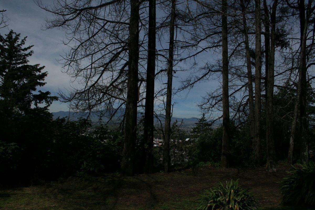 espectacular colina en terreno en venta